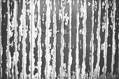 Rusty Scratch Wooden Texture In Black And White Grunge Concept background