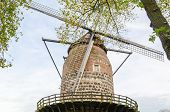 Ancient Windmill In Zons Am Rhein