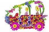 Floral  Bio Car Concept