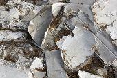 Gypsum Cardboard Pollutes The Wood
