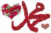 Muhammad Sign