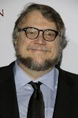 LOS ANGELES - FEB 14: Guillermo Del Toro at the Make-Up Artists & Hair Stylists Guild Awards at the Paramount Theater on February 14, 2015 in Los Angeles, CA