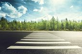 picture of cloud forest  - asphalt road in forest - JPG