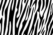 Zebra Stripes Seamless Pattern.