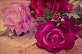 Still Life With Branch Rose