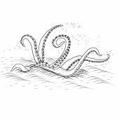 picture of kraken  - mythological kraken tentacles with the sea on a white background - JPG