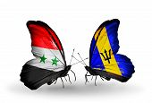 Two Butterflies With Flags On Wings As Symbol Of Relations Syria And Barbados