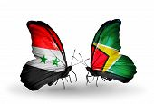 Two Butterflies With Flags On Wings As Symbol Of Relations Syria And Guyana