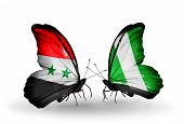 picture of nigeria  - Two butterflies with flags on wings as symbol of relations Syria and Nigeria - JPG