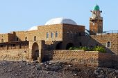 picture of jericho  - Nabi Musa the Tomb of Moses near Jericho and the Dead Sea Israel - JPG