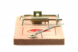 image of mouse trap  - new mouse trap isolated on the white background - JPG