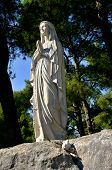 picture of mary  - Statue of Virgin Mary standing on the rock and holding rosary  - JPG