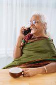 foto of indian sari  - Happy mature Indian woman in sari talking on the phone - JPG