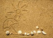 stock photo of cockle shell  - Sun and shells on sand on beach holiday background - JPG