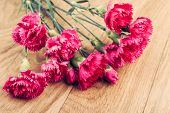 picture of carnation  - Bunch of fresh pink carnations on wooden background - JPG