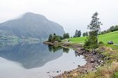 pic of fjord  - Reflection in Norway fjord at fall time - JPG
