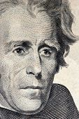 20 Dollar Bill Andrew Jackson Macro