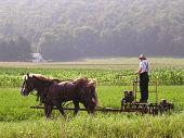 Amish Arbeitstag