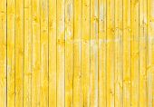 Painted Yellow-ocher Wooden Fence Texture, Old Weathered Wood Background poster