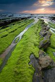 picture of basque country  - Beach of Barrika Bizkaia Basque Country Spain - JPG