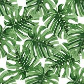 Summer Background. Tropical Palm Leaves, Jungle Leaves Seamless Vector Floral Pattern. poster