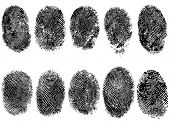 10 Black and White Vector Fingerprints - Very accurately scanned and traced ( Vector is transparent