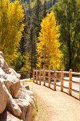 Hiker's Trail In Colorado