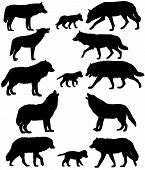 Collection Of Silhouettes Of Wolves And Wolf-cubs poster