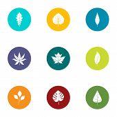 Foliage Icons Set. Flat Set Of 9 Foliage Vector Icons For Web Isolated On White Background poster