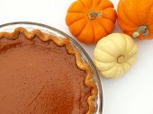 foto of pumpkin pie  - pumpkin pie and mini pumpkins - JPG