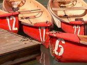 Canoe Cluster