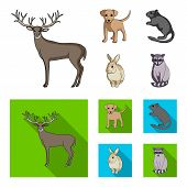 Puppy, Rodent, Rabbit And Other Animal Species.animals Set Collection Icons In Cartoon, Flat Style V poster