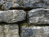 Mossy Stone Wall Detail