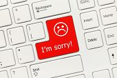 Close-up View On White Conceptual Keyboard - I Am Sorry (red Key) poster