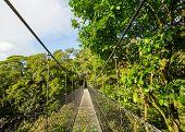 Handing Bridge in green jungle, Costa Rica, Central America poster
