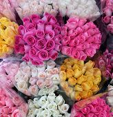 Vibrant Bouquets Of Roses