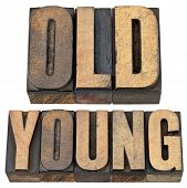 old and young antonym - age or generations concept -- isolated text in vintage letterpress wood type