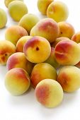 ripe japanese apricot fruits