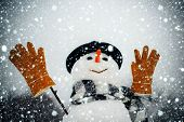 Snowman In A Scarf And Hat. Snowman Wish You Merry Christmas And Happy Holidays. Snowman In Snow For poster
