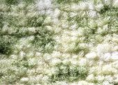Fabric On A Green Carpet As An Abstract Background . poster