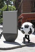 Soccer Ball Disguise