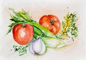 Watercolor Tomatoes And Spicy Greens