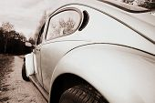 picture of beetle car  - Beetle  - JPG
