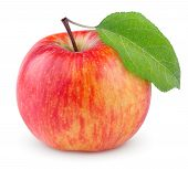 Red Yellow Apple With Leaf