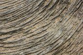 Stone texture lines. Concentric rings intagliated on the stone surface. Natural textured background.