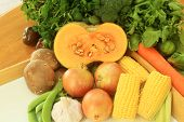 Pumpkin Fresh Vegetables Healthy Grown Organic in Style