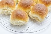 White bread rolls fresh from the oven cooling on a wire rack.