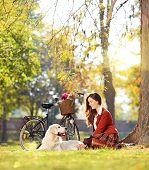 Pretty female sitting down with her labrador retriever dog in a park, shot with a tilt and shift len
