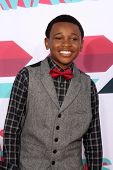 LOS ANGELES - NOV 17:  Curtis Harris at the TeenNick Halo Awards at Hollywood Palladium on November