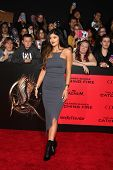 LOS ANGELES - NOV 18:  Kylie Jenner at the The Hunger Games:  Catching Fire Premiere at Nokia Theate